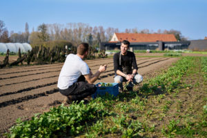 3.1 The European Common Agricultural Policy and Belgian farming specialities